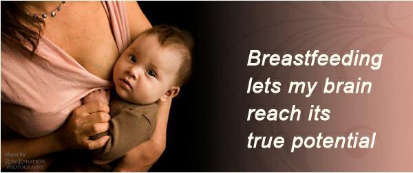 breastfeeding brain potential